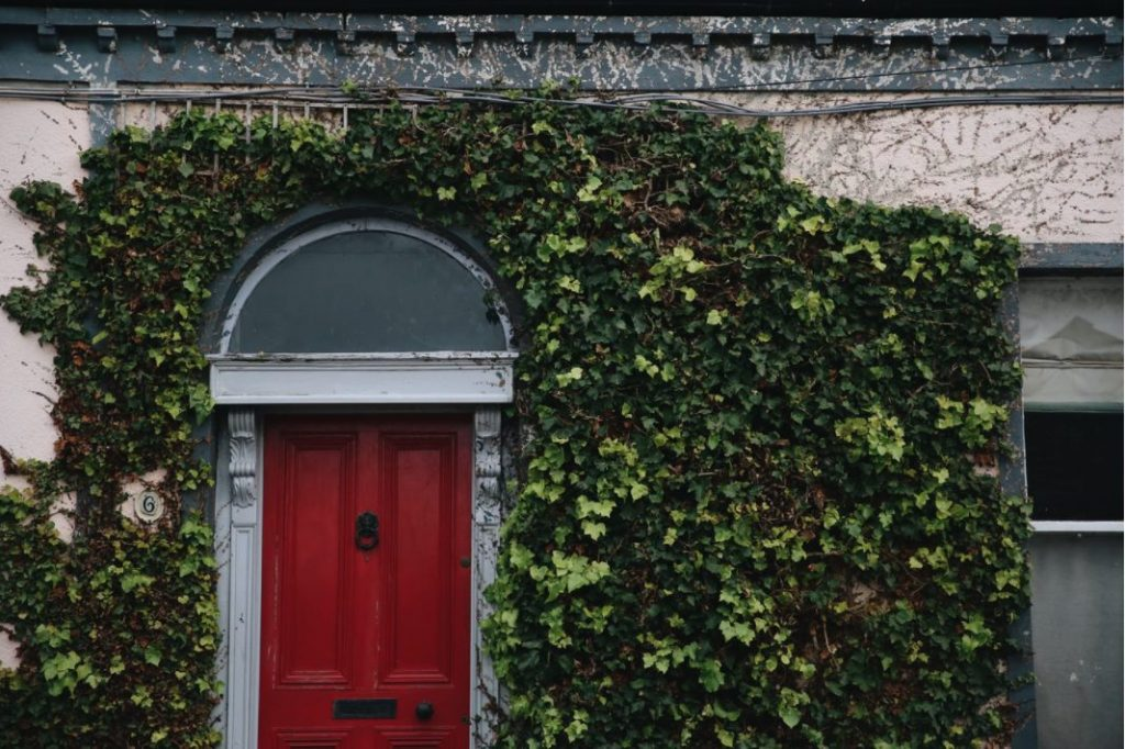 Buying an Old Home? 5 Ways to Make it Your Own